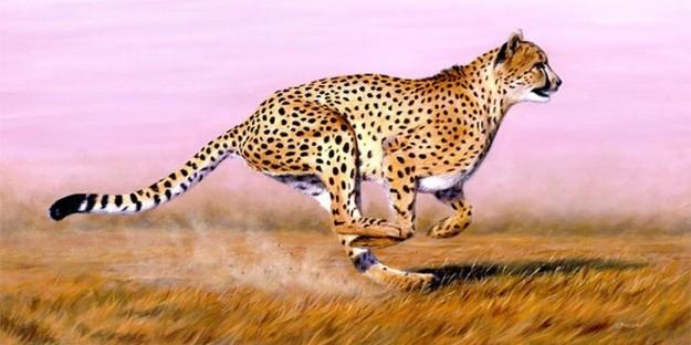 luipaard groep 1